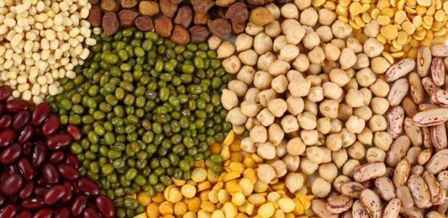 ایجاد قطب علمی حبوبات در پژوهشکده علوم گیاهی دانشگاه فردوسی، بانک بذر بقولات دستاوردی مهم درکشور