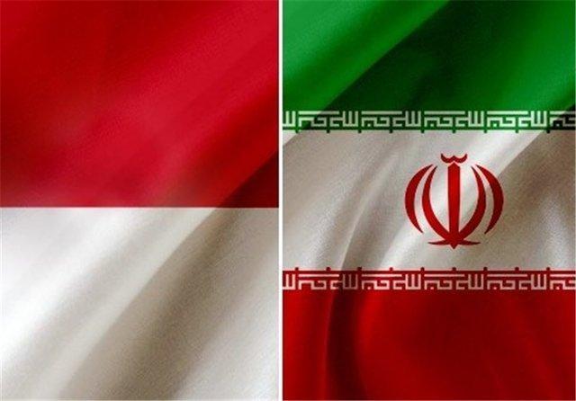 تاسیس فدراسیونی متشکل از روسای دانشگاه های برتر ایران و اندونزی