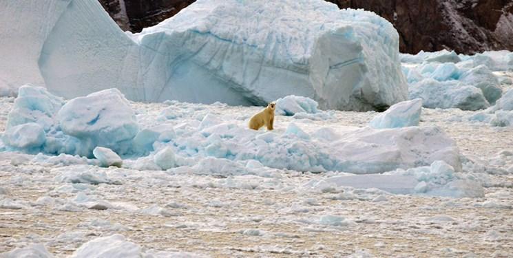 گرمایش جهانی برف آلاسکا را ذوب می نماید