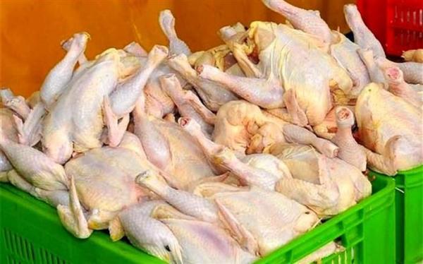 استمرار ثبات قیمت مرغ در بازار شب یلدا