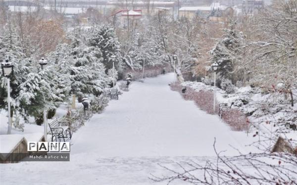 برف و باران، وزش باد شدید و کاهش شدید دما در راه است