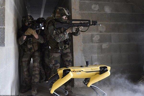 پای سگ های رباتیک به ارتش فرانسه باز شد
