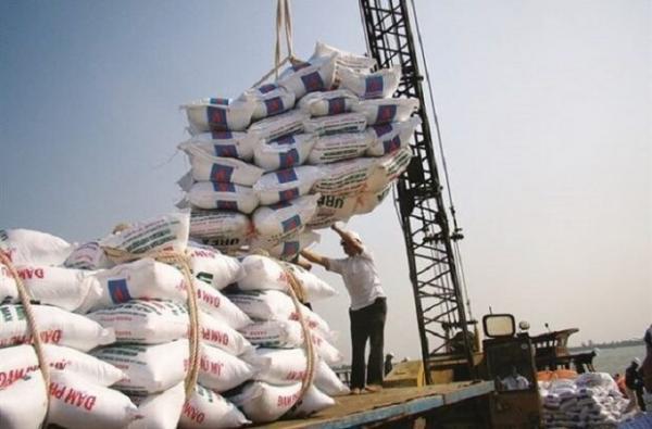 لطیفی: 12 هزار تن برنج در حال ترخیص است، رشد 34 درصدی واردات برنج